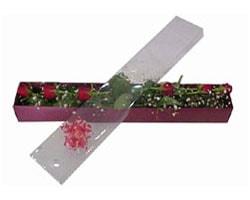 Eskişehir anneler günü çiçek yolla   6 adet kirmizi gül kutu içinde