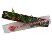 Eskişehir hediye çiçek yolla  3 adet gül.kutu yaldizlidir.