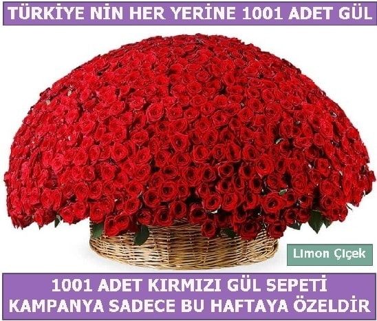 1001 Adet kırmızı gül Bu haftaya özel  Eskişehir İnternetten çiçek siparişi