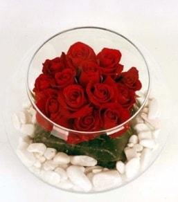 Cam fanusta 11 adet kırmızı gül  Eskişehir çiçek gönderme