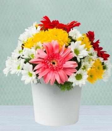 Seramik Vazoda Gelbera ve Papatya  Eskişehir çiçek gönderme
