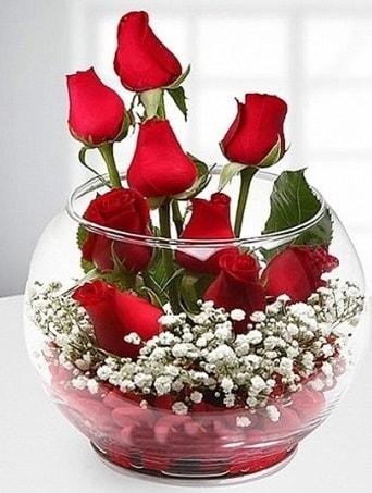 Kırmızı Mutluluk fanusta 9 kırmızı gül  Eskişehir çiçek siparişi sitesi