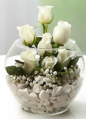 Beyaz Mutluluk 9 beyaz gül fanusta  Eskişehir çiçek siparişi sitesi