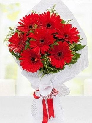 Kırmızı Gelbera Buketi  Eskişehir internetten çiçek siparişi