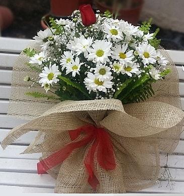 Papatya 1 adet kırmızı gül buketi  Eskişehir çiçekçiler