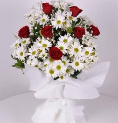 7 adet kırmızı gül ve papatyalar krizantem  Eskişehir internetten çiçek satışı