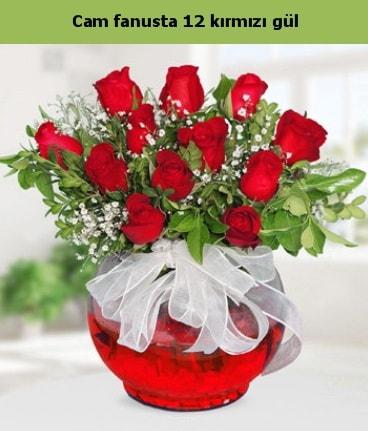 Cam içerisinde 12 adet kırmızı gül  Eskişehir internetten çiçek satışı