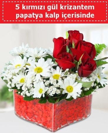 mika kalp içerisinde 5 kırmızı gül papatya  Eskişehir çiçek gönderme