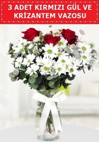 3 kırmızı gül ve camda krizantem çiçekleri  Eskişehir çiçek gönderme