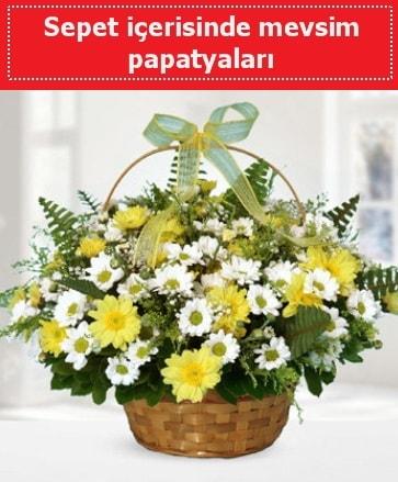 Sepet içerisinde mevsim papatyaları  Eskişehir ucuz çiçek gönder