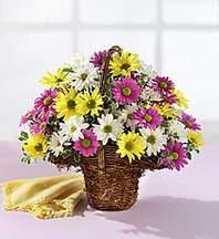 Eskişehir çiçekçiler  Mevsim çiçekleri sepeti